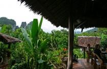 Thailand, Khao Sok National Park, Dschungelcamp
