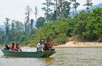 Malaysia, Endau Rompin National Park