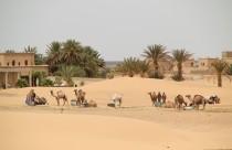 Erg Chebbi, Marokko, Merzouga, Wüste